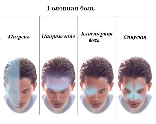женские зимние головные уборы 2012-2013